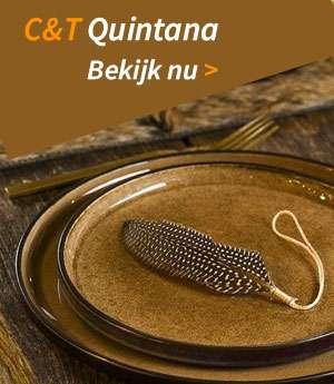 Bekijk de Quintana reeks nu